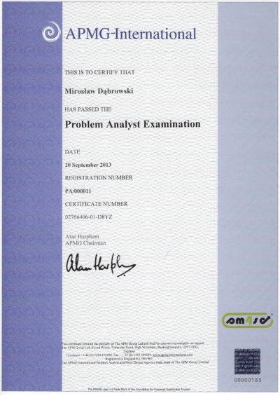Problem Analyst